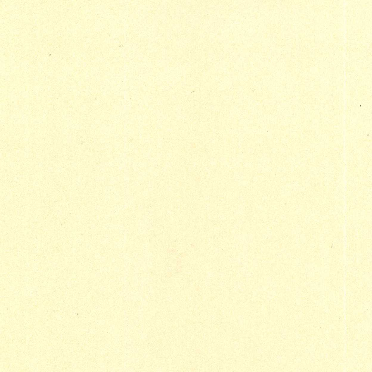 Pearlised Paper A4 - Cream / Dark Ivory