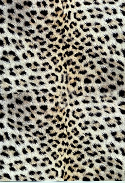 Backing Paper A4 - Leopard Skin