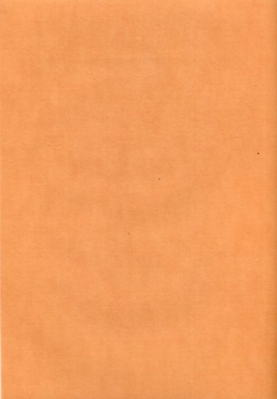 Plain Vellum A4 - Terracotta (Light)