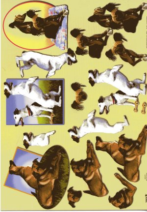 A4 Decoupage Sheet - Dogs (504306)
