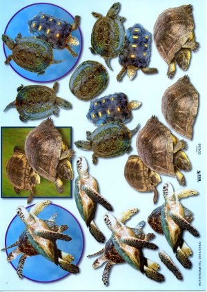 A4 Decoupage Sheet - Turtles / Tortoises (504298)