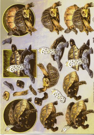 A4 Decoupage Sheet - Turtles / Tortoises (504308)