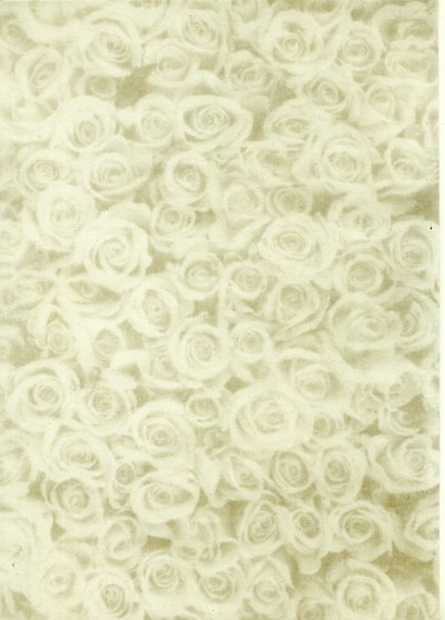 Printed Card A4 - Gold Rose Montage (Small)