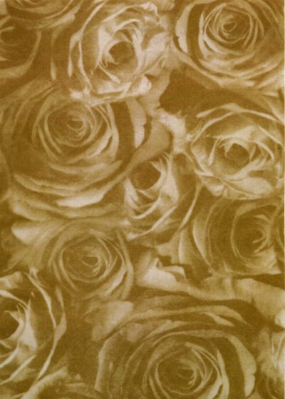 Backing Paper A4 - Old Gold Rose Montage (Large)