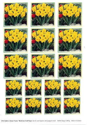 Multi Use Paper - Daffodils